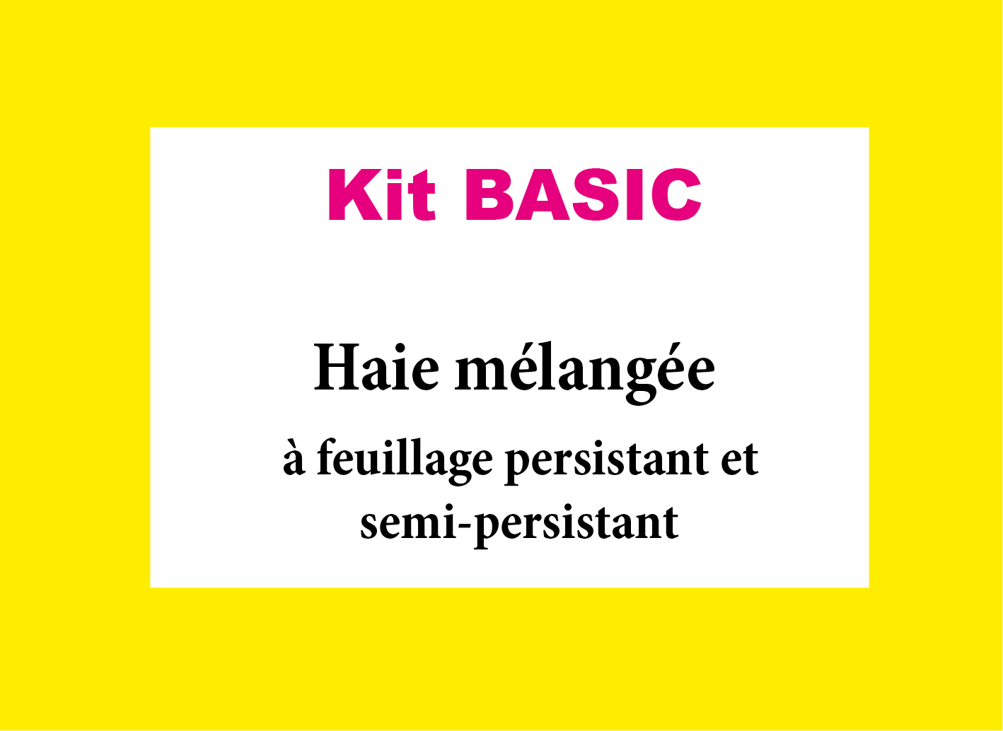 Kit basic haie m lang e feuillage persistant ou semi - Haie feuillage persistant ...
