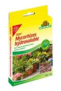 MYCORHIZES HYDROSOLUBLE
